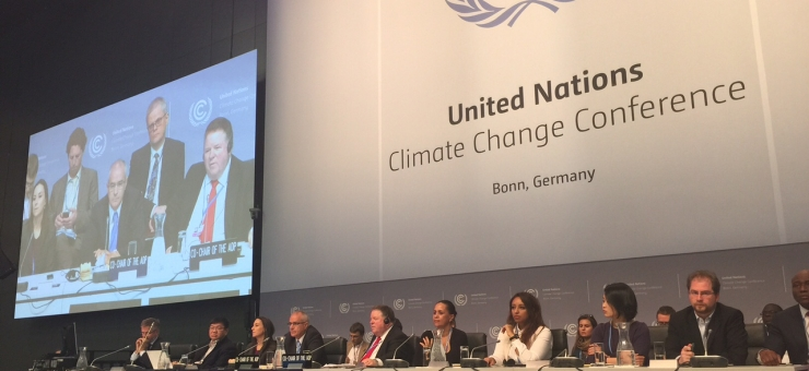 Call for Nominations for IFLRY Delegation to UNFCCC SB44