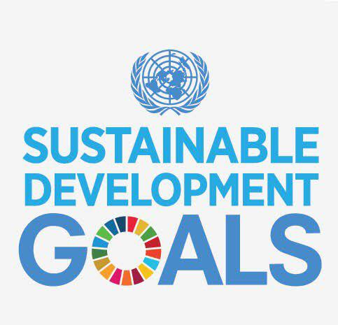 Call for Application: SDG Working Group